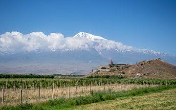Monastère de Khor Virap, Arménie sur Stijn Cleynhens