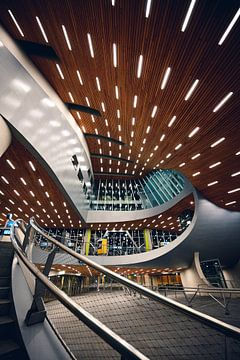 La gare centrale d'Arnhem et ses courbes sur Wahid Fayumzadah