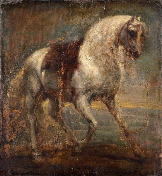 Ein Schimmelpferd, Anthony van Dyck. von Meesterlijcke Meesters