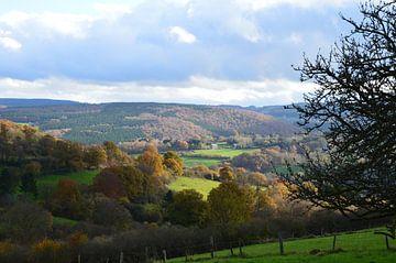 Landschap in de Ardennen von Kim V