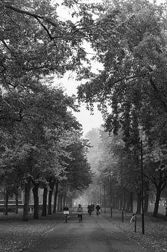 Mit dem Fahrrad durch den Park von Simon van Nispen