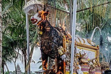 verbrandingsceremonie van Stefan Havadi-Nagy