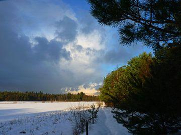 Winters beeld van M de Vos