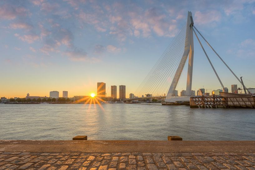 Erasmus Bridge in Rotterdam van Michael Valjak