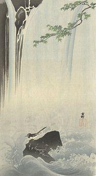 Japanische Bachstelze am Ohara Koson Wasserfall - 1900 - 1930