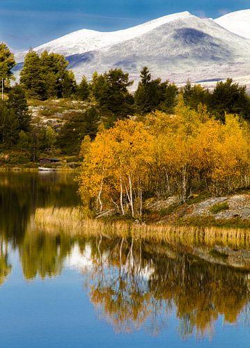Reflectie in meer