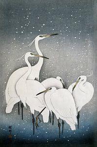 Kraanvogels, een oude Japanse meester in prachtige kleuren