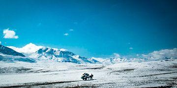 Transport in großer Höhe, Himalaya, Tibet von Rietje Bulthuis