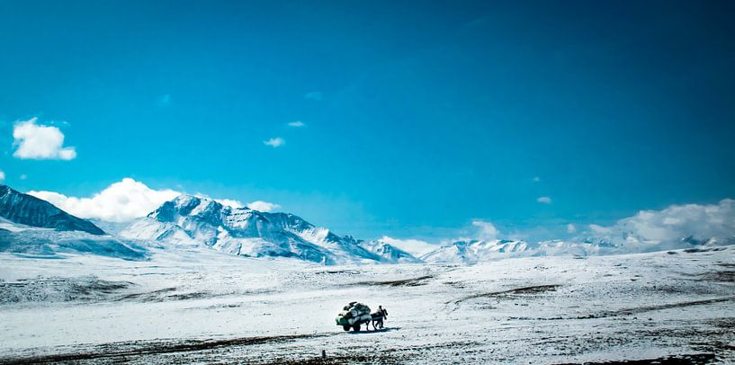 Transport op grote hoogte, himalaya, Tibet van Rietje Bulthuis