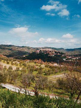 Ikonischer italienischer Blick auf ein kleines Dorf inmitten des Weinbergs von Evy Bakker