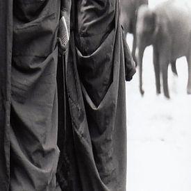 Paneel 2 van tweeluik Monnikken kijken toe hoe jonge olifanten gewassen worden (Paneel 2 van een twe van Affect Fotografie