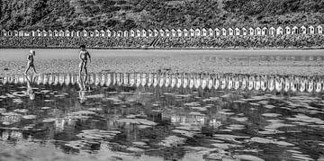 Zomertafareel op het Franse strand van Carteret, Normandie von Harrie Muis