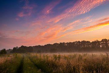 colorful sky van Kim Lijnders