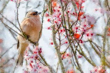 Fink genießt die Frühlingsblüte (Gemälde) von Art by Jeronimo