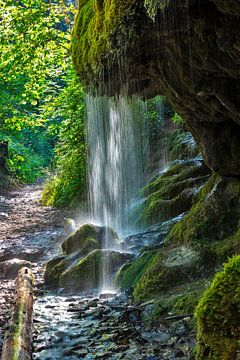 mosachtige waterval van Jürgen Wiesler