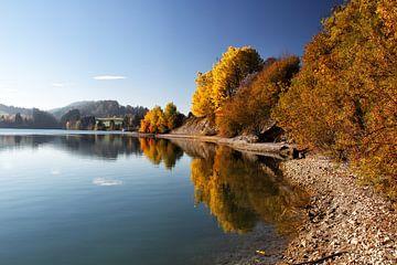 Herbst am Forggensee von Dirk Rüter