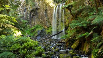 Hopetoun Falls, Victoria Australie van