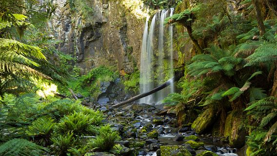 Hopetoun Falls, Victoria Australie van Chris van Kan
