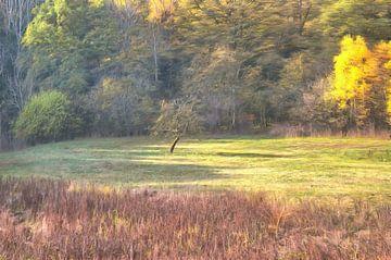 Landscape von Tomas S.