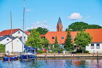 Landelijk tafereel aan de rivier de Ryck in Greifswald. van Michaela Bechinie
