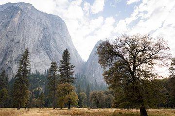 Yosemite bergen van Ingeborg van Bruggen