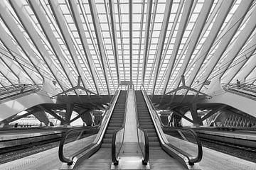 Symmetrie in Guillemins von Michael Echteld