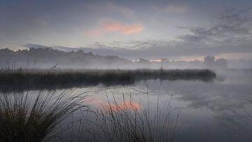 Lever de soleil avec une brume basse réfléchie dans le Hatertse Vennen sur