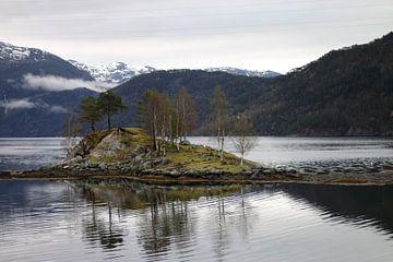Fjords Norvégiens Norvège sur