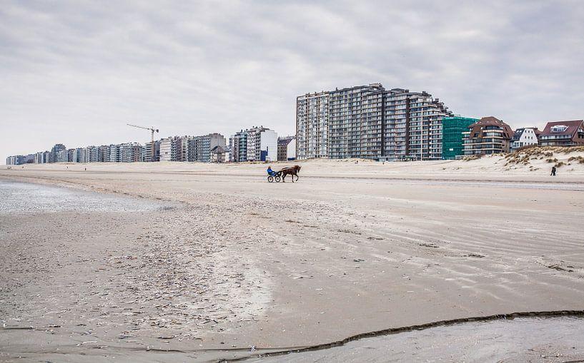 Strand van Nieuwpoort van Harry Schuitemaker