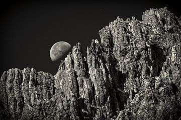 Bergmaan van Rob Boon
