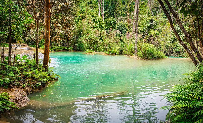 Waterbassin bij de Kuang Si waterval, Laos van Rietje Bulthuis