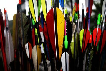 Arrow van 10x15 Fotografia