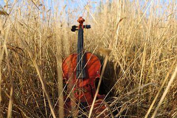 viool in gras van Marije du Bateau