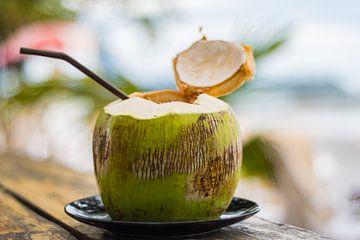 Kokosnuss van Namurr_ PhotoArts