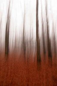 bewogen bomen iii/iii van