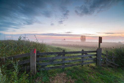 Polderlandschap Alblasserwaard in mist kort voor zonsopkomst