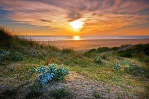Baubigny strand van Ruud Peters