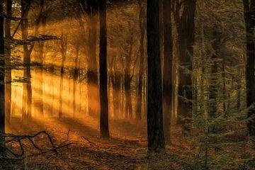 Sun Rays van Hans Soowijl