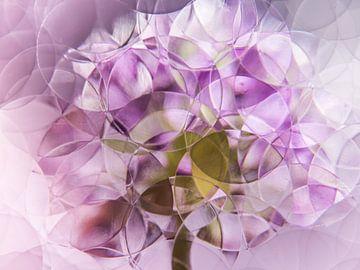 pastel paars roze uienbol ( abstract stilleven ) van Marjolijn van den Berg