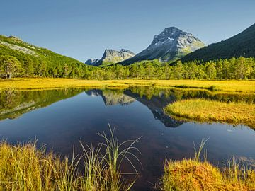 Herfst in Noorwegen I van Rainer Mirau