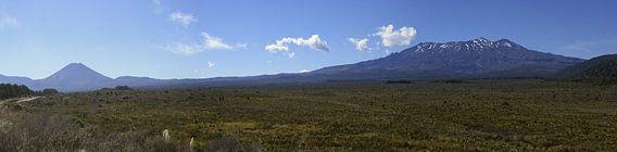 Tongariro National Park, Nieuw Zeeland van Jeroen van Deel