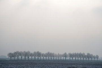 Grauw Landschap von Ronald Jansen