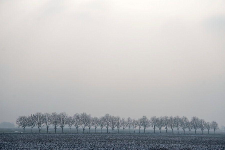 Grauw Landschap van Ronald Jansen