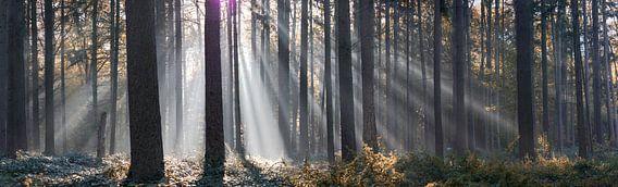 Panorama zonnestralen van Bart Ceuppens