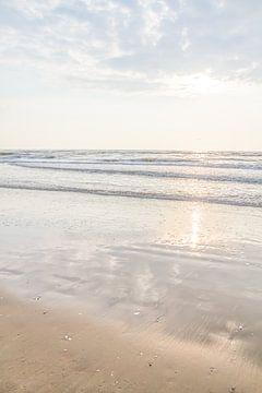 Zon, zee, zen van Qeimoy
