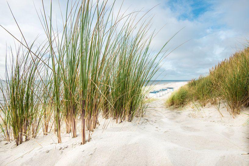Strandszene van Hannes Cmarits