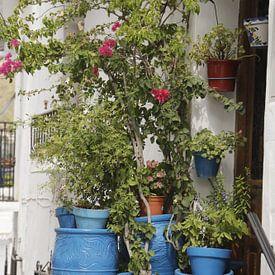 Blauwe bloempotten voor een huisje van Cora Unk