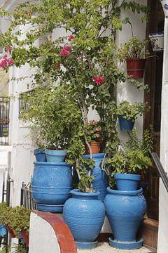 Blauwe bloempotten voor een huisje van
