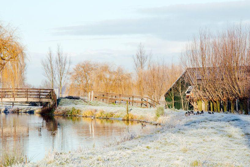 Nederlands winterlandschap van Annieke Slob