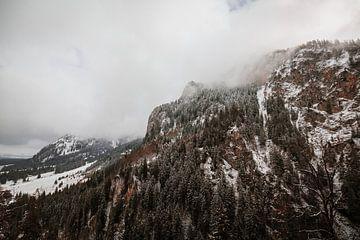 Alpsee   Winter in de Alpen van Nanda van der Eijk